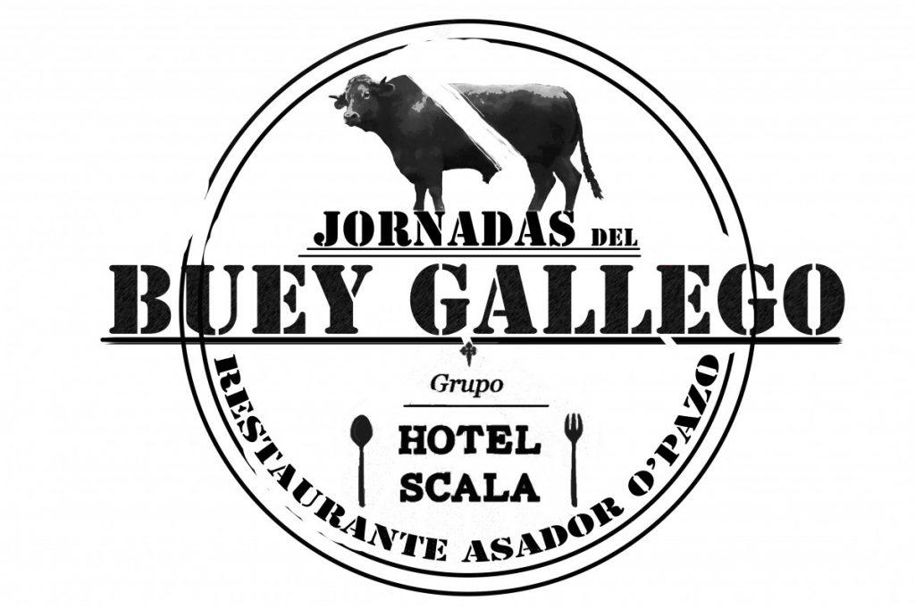 Jornadas Buey Gallego